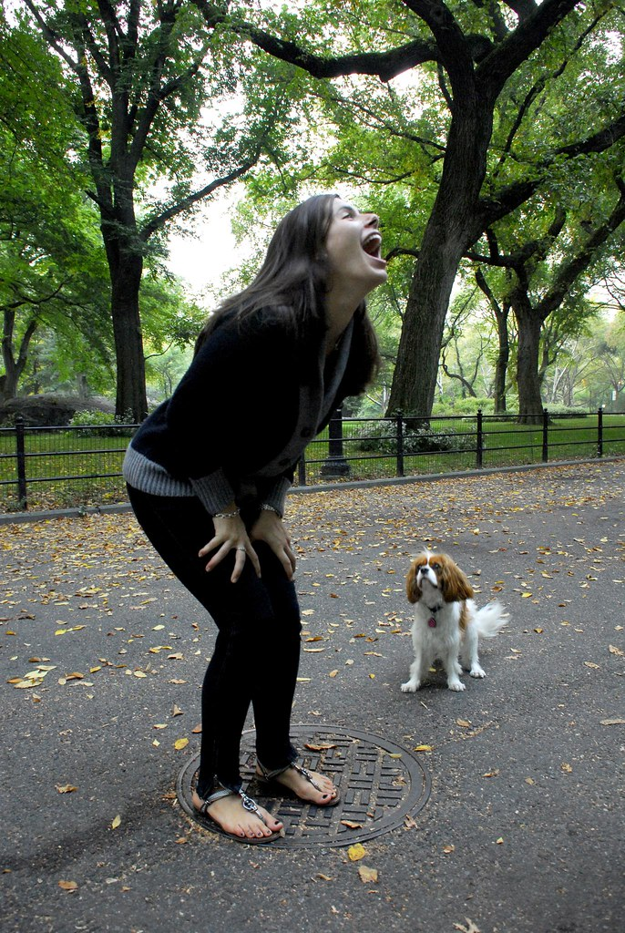 Best Neighborhood In Nyc For Dogs