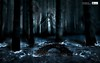 Dark forest with dragon (Infoway LLC - Website Development Company) Tags: wallpaper beautiful wonderful nice superb awesome images exotic hd illustrator incredible breathtaking classy bambooforest mindblowing dryforest amazonrainforest greenforest winterforest woodforest junglewallpaper sunsetwallpaper islandwallpaper summerforest responsivewebsitedesign darkforestwithdragon subtropicalforestwallpaper waterfallintropicalforest responsivewebdesigncompany mountainsnowforest yellowredautumnforest tropicaldesertisland tropicalforestwithriver