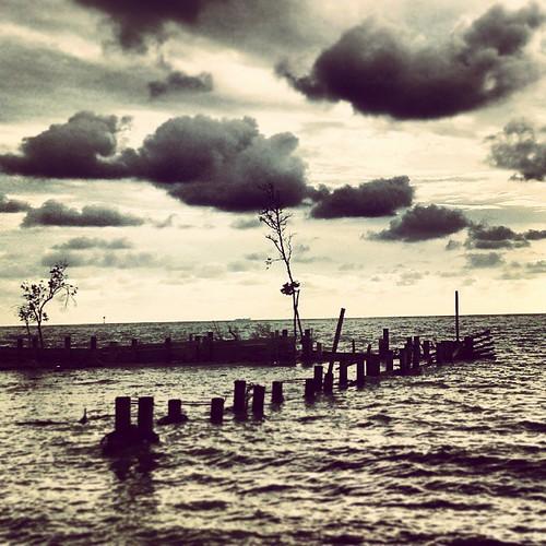 Land half submerged into the sea.