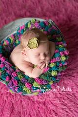 Claire (njmommyof3boys) Tags: pink baby flower green girl metal bucket purple blanket newborn headband pompom galvanized