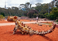 Red Centre Garden (screenstreet) Tags: sculpture publicart australiannationalbotanicgardens colorefexpro tokina1116mmf28 redcentregarden