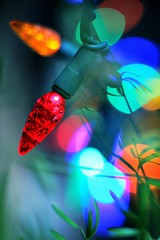 Holiday Lights (ChristinaPhelps808) Tags: blue red orange abstract macro green yellow bokeh surreal christmaslights foliage lenswhacking
