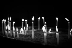 memorial lights ...