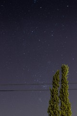 Capturing the stars (Carlos Oliveira.) Tags: trees sky night lens stars landscape photography 50mm lights photo shot capture