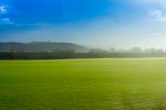 Field (Moretti Matteo) Tags: sky sun field strada blu erba camion cielo campo plain prato