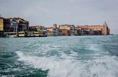 Venecia (juliet_earth) Tags: carnival venice italy water boat canal agua italia photojournalism carnaval gondola venecia venezia gondole veneto carival