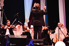 8 Martie 2014 » Armonii de primăvară