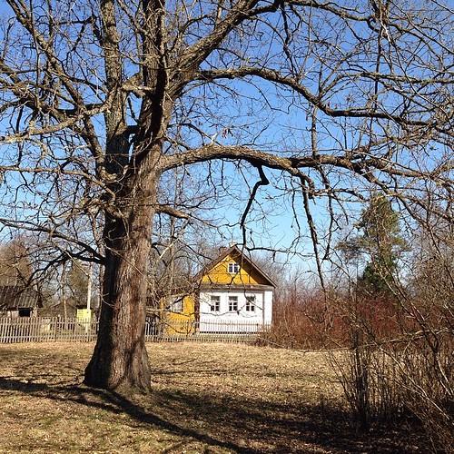 #весна #сезон #открытие #парк #деревня #усадьба #дом