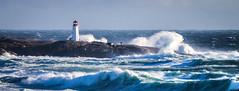 40 Foot Crashers (Darren Berg) Tags: lighthouse water waves novascotia halifax peggyscove