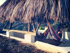 hammock sleeping in Minca (Flora_AB) Tags: costa mountain southamerica coast colombia jungle caribbean minca