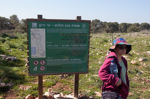 Gilboa Nature Reserve - Mt Barkan