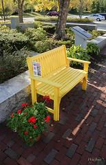 Yellow Bench (wyojones) Tags: flowers autumn fall yellow bench parkinglot vermont bricks granite np geraniums guilford i91 vermontwelcomecenter wyojones vermontgranite