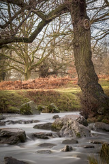 Flowing Water in the River Lin at Bradgate Park, Leicestershire (John__Hull) Tags: park trees sky sunlight water river rocks long exposure leicestershire leicester flowing lin bradgate