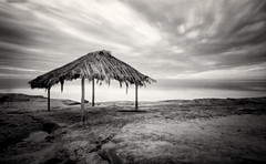 Lone Shelter (_johnnelson_) Tags: sandiego lajolla pinhole illford ef zeroimage panf zero69 zeroimage69 prescysol
