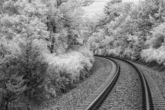 Somewhere Special II (John C. House) Tags: monochrome nikon knoxville tennessee d70s july infrared nik railroadtracks everydaymiracles johnchouse