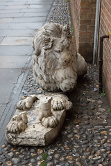 Legless Lion (SReed99342) Tags: uk england streetart london statue lion legless