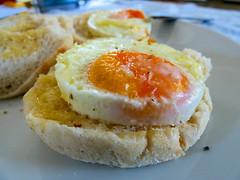 Eggs for breakfast (Sandy Austin) Tags: newzealand food breakfast muffins auckland eggs northisland westauckland sandyaustin airfryer panasoniclumixdmcfz70 airoven