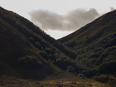 How Deep Is My Valley (Steve Taylor (Photography)) Tags: trees newzealand cloud brown white foothills green forest landscape spring hill deep diagonal valley nz southisland southernalps steep