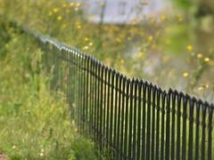 never ending fence (robra shotography []O]) Tags: park fence bokeh perspective af180mmf28 fencefriday
