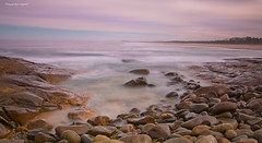 On the rocks 000014 s (kevin.chippindall) Tags: seascape approved crowdy