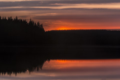 sunset (sami kuosmanen) Tags: suomi sky summer sun sunset finland forest flash foto taivas tuulos oksjrvi bokeh intentionalcameramovement icm luonto light landscape lake liike mets movement kamera heijastus reflection jrvi clouds colorful red punainen orange oranssi
