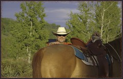 ye haw (zawaski) Tags: horses canada calgary beauty ambientlight dick noflash alberta bonnie rockymountains canmore canonefs18200mmf3556is zawaski2016