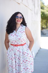 Seeing Flamingos (GirlWithCurves) Tags: curlyhair vintagestyle modcloth girlwithcurves plussizeblogger taneshaawasthi