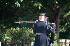 Weapon inspection (stevesheriw) Tags: arlington virginia arlingtonnationalcemetery tomboftheunknowns sentinel oldguard