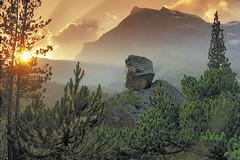 SWITZERLAND.GET NATURAL. (bergdorfem) Tags: autumn mountain mountains alps fall berg fog montagne automne schweiz switzerland nebel herbst berge alpen brouillard montagnes autome