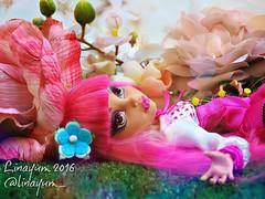 (Linayum) Tags: howleenwolf howleen mh monster monsterhigh mattel doll dolls mueca muecas toy toys juguete linayum