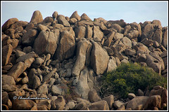 6246 - gingee (chandrasekaran a 34 lakhs views Thanks to all) Tags: india canon stones hills tamilnadu gingee