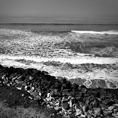 Fly Like a Seagull (Dom Guillochon) Tags: life above nature rock surf noiretblanc cliffs pacificocean foam sunsetcliffs
