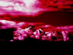 Mystical Mount Shasta in Red By Sherrie D. Larch (sherrielarch) Tags: red snow northerncalifornia bluesky summertime mountshasta brightred digitalphotography redandblack darkred cascademountains darkpink digitallyaltered sherrielarch