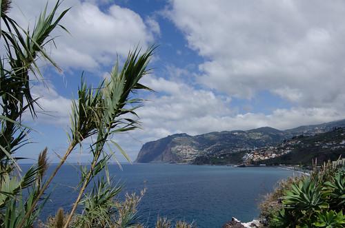 Madeira ©  Still ePsiLoN