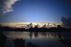 Sungei Punggol Sunset (MarPa87) Tags: trees sunset sky reflection water silhouette clouds horizon