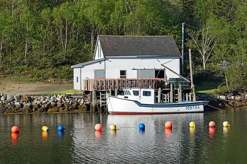 canada boat fishing novascotia sony free lobster dennis jarvis buoys traps southshore iamcanadian 18200mm aspotogan mirrorless freepicture lighthouseroute 1650mm dennisjarvis a6300 archer10 dennisgjarvis ilce6300