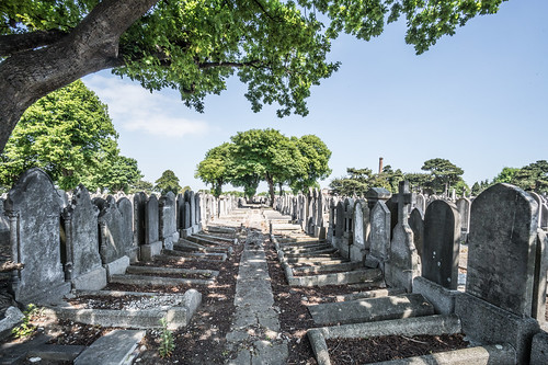 MOUNT JEROME CEMETERY AND CREMATORIUM IN HAROLD'S CROSS [SONY A7RM2 WITH VOIGTLANDER 15mm LENS]-117078