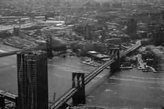 NY-22.jpg