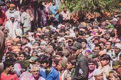 Barsana Nandgaon Lathmar Holi Low res (9 of 136) (Sanjukta Basu) Tags: holi festivalofcolour india lathmarholi barsana nandgaon radhakrishna colours