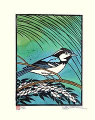 Japanese kerria and great tit (Japanese Flower and Bird Art) Tags: flower bird art japan modern print japanese major tit great japonica woodblock makoto parus kerria rosaceae paridae readercollection yumeda