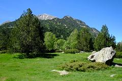 Parc Nacional d'Aigestortes i Estany de Sant Maurici (Xaf) Tags: naturaleza mountain primavera nature trekking spring natura catalonia fujifilm catalunya montaa senderismo senderisme muntanya aigestortes valldebo parcnacionaldaigestortesiestanydesantmaurici fujifilmxworld esfujifilmx