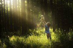 Playing in the Light (Phillip Haumesser Photography) Tags: bear light boy summer playing green boys kids forest children fun kid woods child play magic adventure teddybear imagination magical sunbeams philliphaumesser barnhollownaturalarea