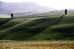 (claudiophoto) Tags: italy verde landscape unesco tuscany siena pienza toscana valdorcia paesaggio paesaggitoscani fototoscana