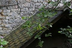 Toit en Lauze sous mur en pierres (Pi-F) Tags: pierre toit mur aveyron marcillac feuillage salleslasource lauze