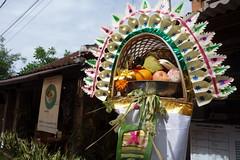 DSC00201 (Peripatete) Tags: family bali nature festival fruit prayer religion ceremony hindu ubud offerings galungan penjor