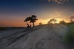The perfect Sunset (himadri_bijaypuri) Tags: sunset sky ny newyork tree bearmountain goldenhour himadribijaypuri parkinsmemorialobservatory