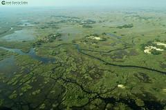 15-09-20 Ruta Okavango Botswana (119) R01 (Nikobo3) Tags: travel parque paisajes naturaleza color canon ngc delta unesco viajes botswana okavango vuelo twop frica vidasalvaje g7x omot deltadelokavango flickrtravelaward canong7x nikobo josgarcacobo todosloscomentarios