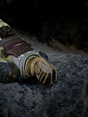 Sometimes God Made Mistakes (Geek Creek) Tags: kane alien neca perrinebridgehellmouth toys toyphotography actionfigures facehugger