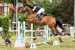 DSC03101_s (AndiP66) Tags: concourshippique springen thörigen 2016 11juni2016 juni pferd horse schweiz switzerland kantonbern cantonberne concours wettbewerb horsejumping equestrian sports springreiten pferdespringen pferdesport sport sony sonyalpha 77markii 77ii 77m2 a77ii alpha ilca77m2 slta77ii sony70400mm f456 sony70400mmf456gssmii sal70400g2 andreaspeters bern ch