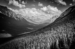 ROLLING (Matthew Rodwell Photography) Tags: park mountain canada calgary car hill cable national alberta banff gondola sulphur gondolier